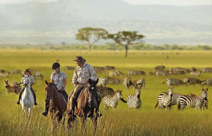 The Serengeti Spear
